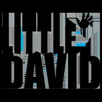 LITTLE DAVID logo